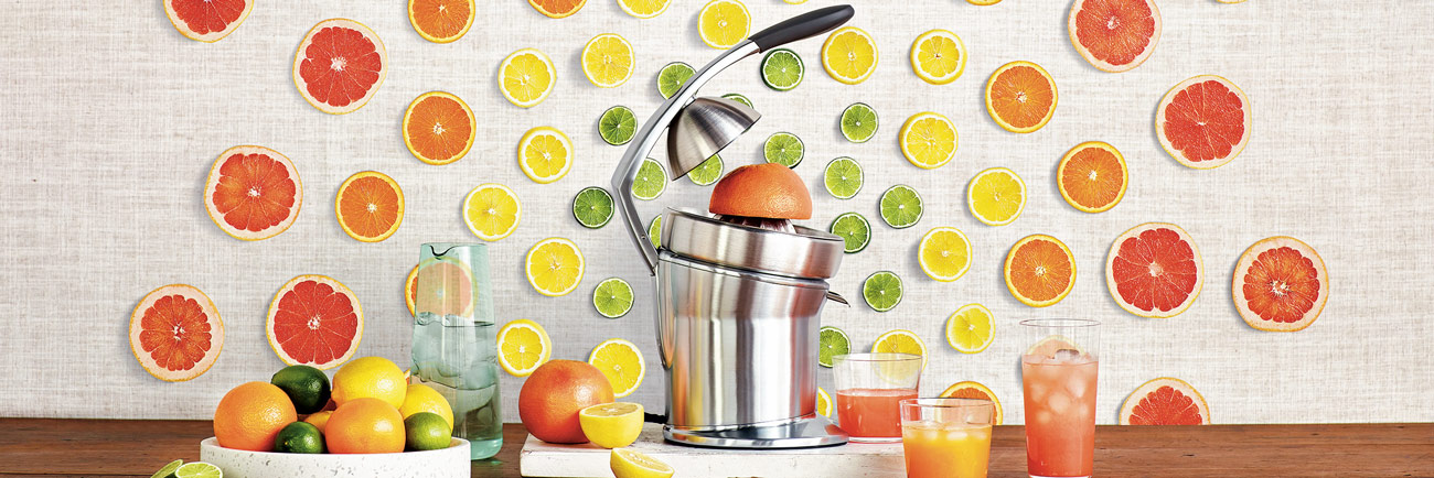 the Citrus Press™ Pro Juicers in Brushed Stainless Steel